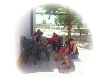 http://www.acselpia.com